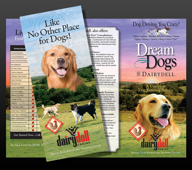 graphic design for dog training company brochure