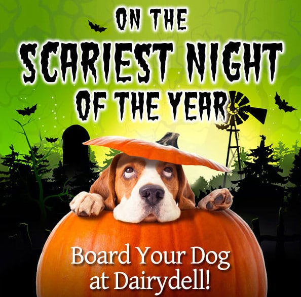 Dairydell Halloween Emailing