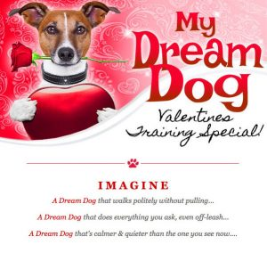 Email marketing graphics for valentine promo