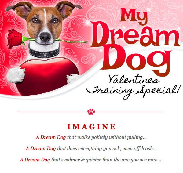 Valentine Promo for Dog Trainer
