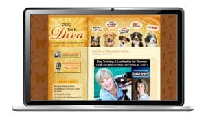 website design for dog trainer